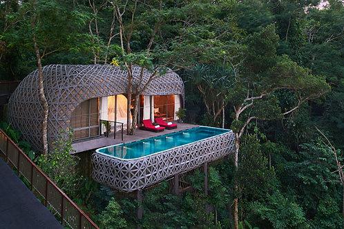 Leben wie Tarzan und Jane im Luxus