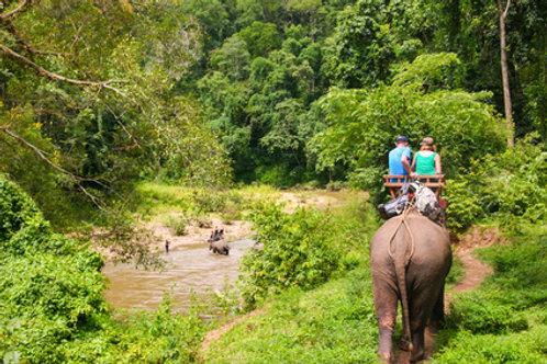 Dschungelabenteuer in Nordthailand