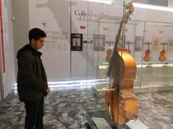 Stradivarius Museum