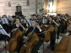 Cellos in Cremona