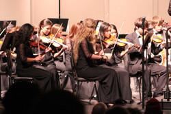 violin elite