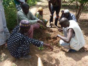 Projet Agro-écologie