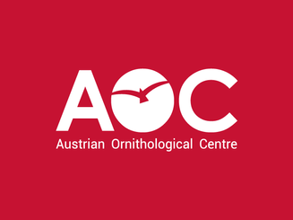 inbaros branding austrian brand logo