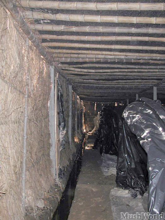 Peq invernaderos bajo techo.jpg