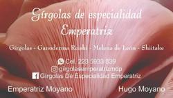 GIRGOLAS EMPERATRIZ