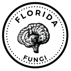 Florida Fungi