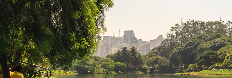 Quadro Uma tarde no Ibirapuera - Picture One afternoon at Ibirapuera by Kcris Ramos