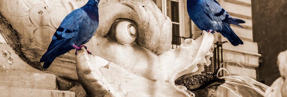 Quadro Pombos Romanos - Picture Pigeons Roman by Kcris Ramos