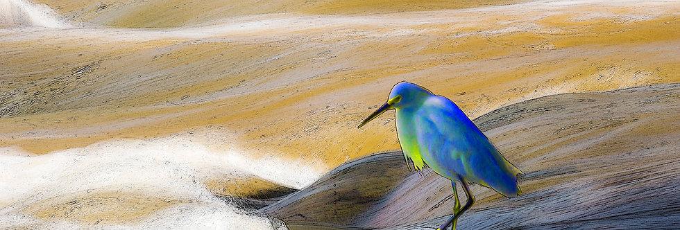 Quadro A Garça Azul - Frame The Pink Heron by Kcris Ramos