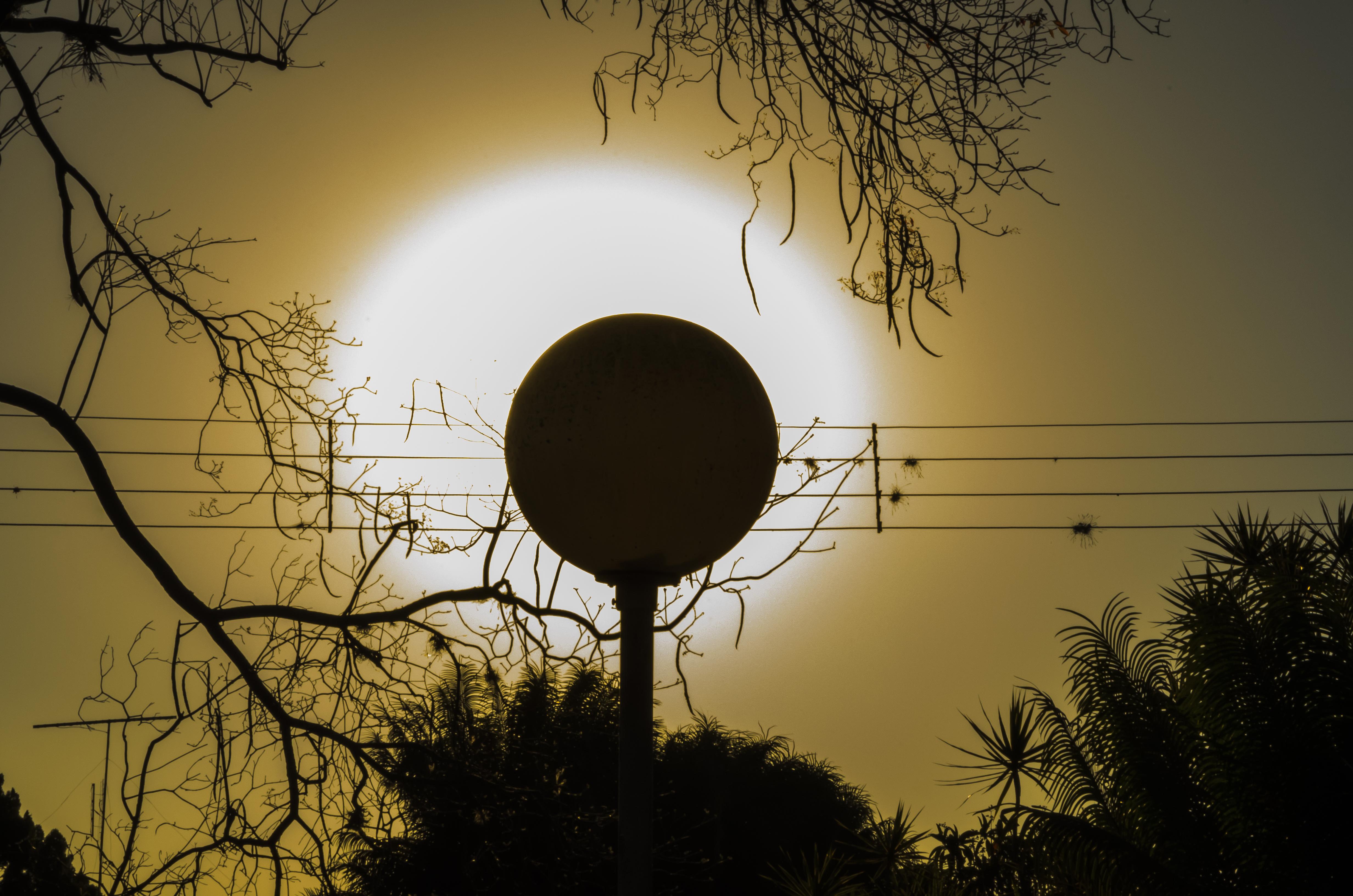 Fine art Música que a Natureza Faz