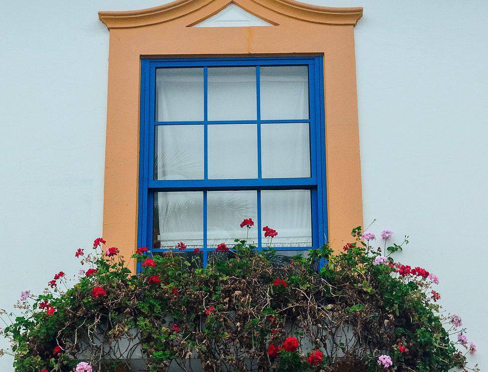 Quadro Janela em flor - Picture Window in bloom by Kcris Ramos