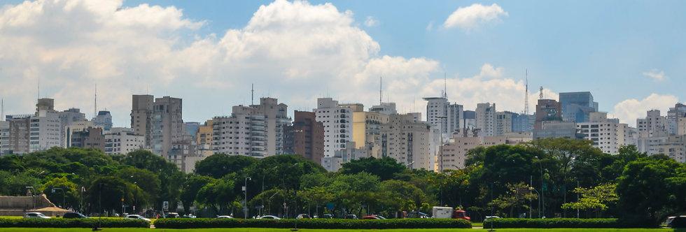 Quadro Ibirapuera contrastes - picture Ibirapuera contrasts by Kcris Ramos