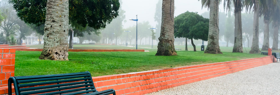 O banco e o nevoeiro por Kcris Ramos