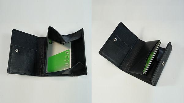 card-in-coin01.jpg