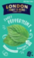 LFH Sweet Peppermint.jpg