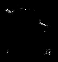 AAC logo-transparent.png