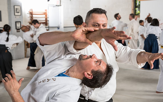 iriminage aikido back stretch