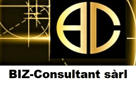 BIZ-Consultant moves to a new Website