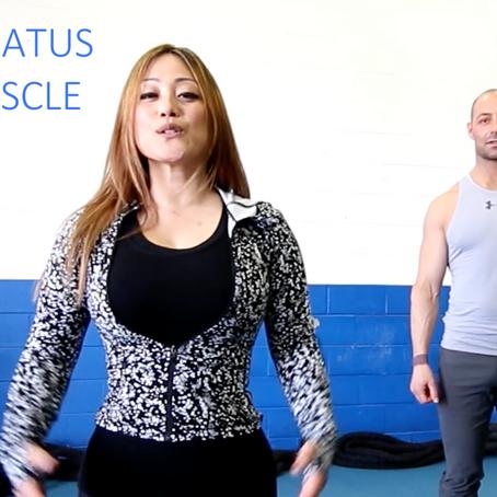 SERRATUS MUSCLE EXERCISE