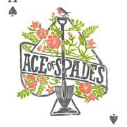 ace of spades card.jpg