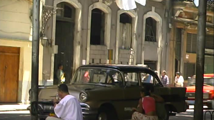 Havana Tropical