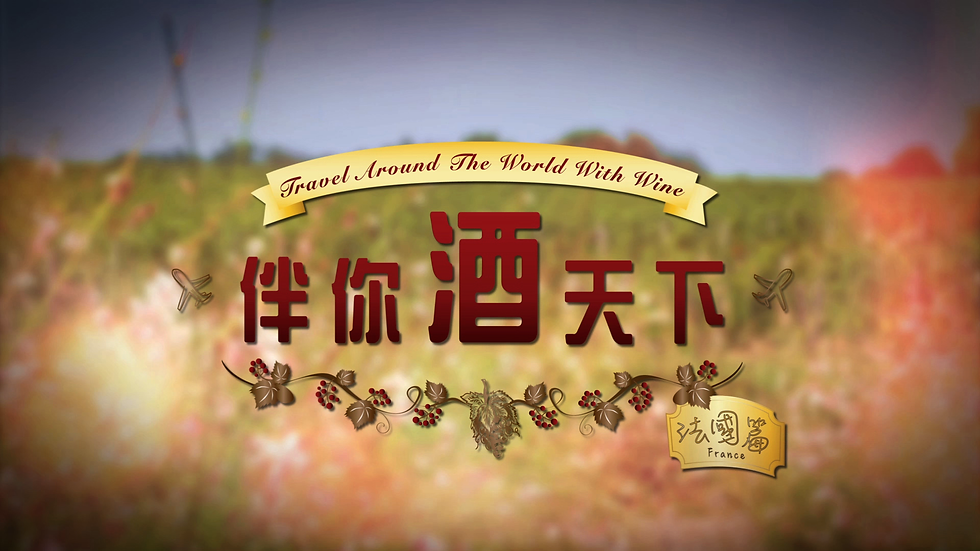 Travel Around The World With Wine