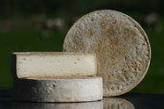 PASCALE-F_fromages.jpg
