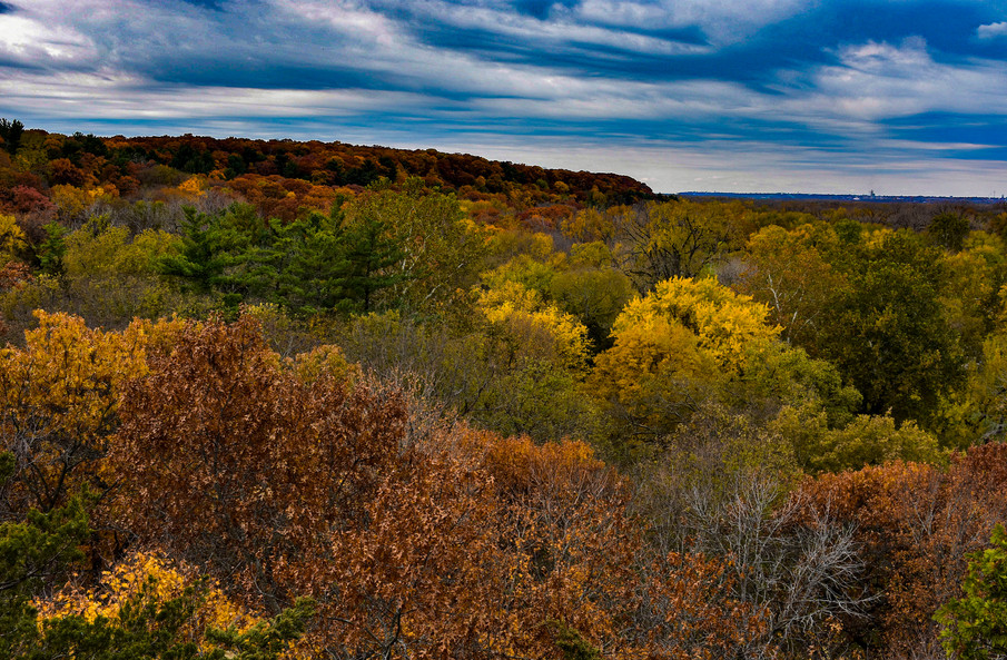 Fall Foliage Starved Rock