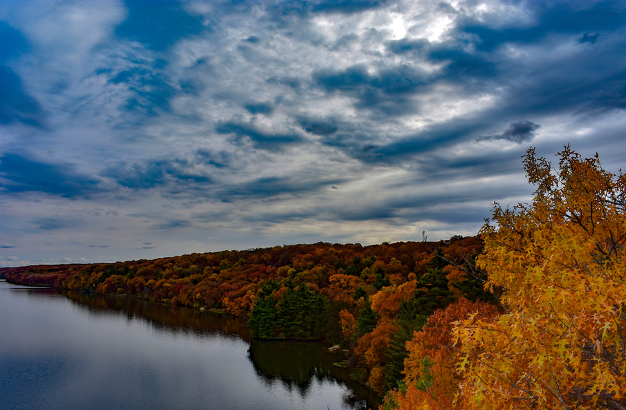 Starved Rock Foliage