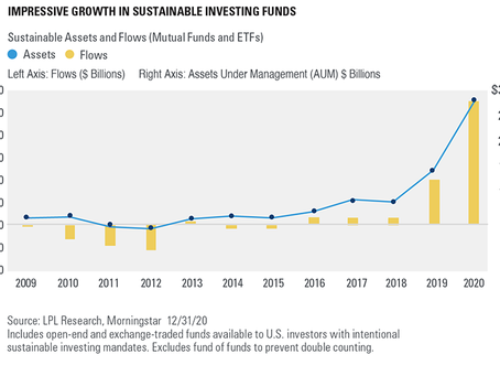 Sustainable Investing Year In Review