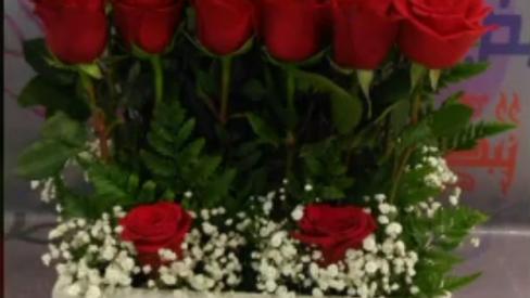 composition roses fougères