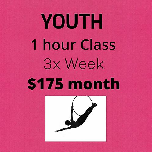 Youth 1 hr Class 3x week