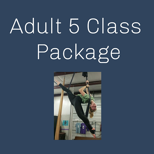 Adult 5 Class Package