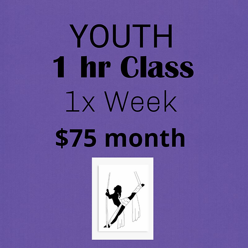 YOUTH Monthly Tuition: 1 x Week