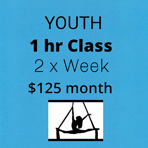 YOUTH  Monthly Tuition ...2x week