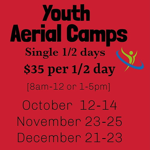 Single 1/2 Day Youth Aerial Camp
