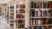 media_29102019_101425biblioteca_divulint