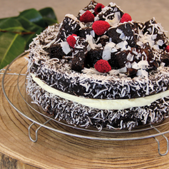 Chocolate Lamington Chiffon