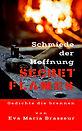 1-Secret flames 2_Cover.jpg