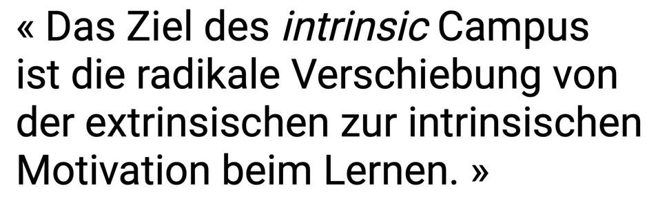intrinsic_Ziel.jpg
