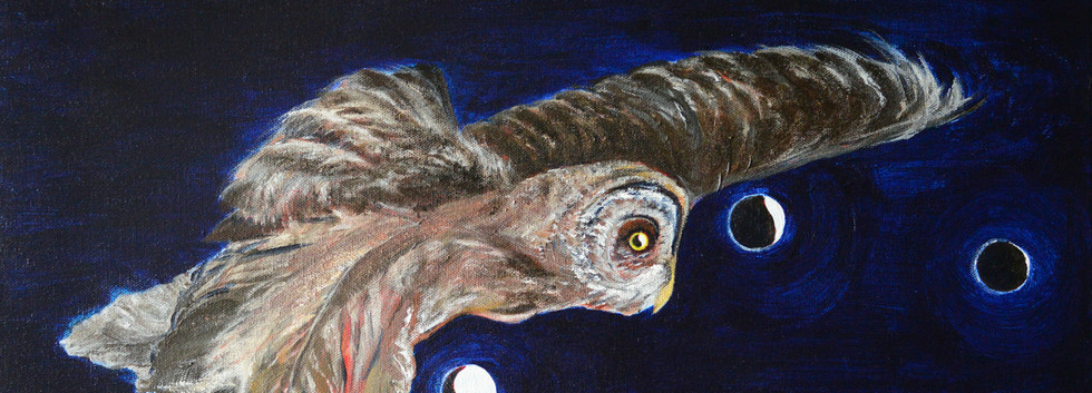 Great Grey Owl Lunar Eclipse
