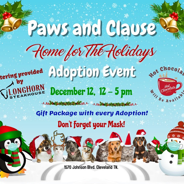 Paws and Clause Adoption Event