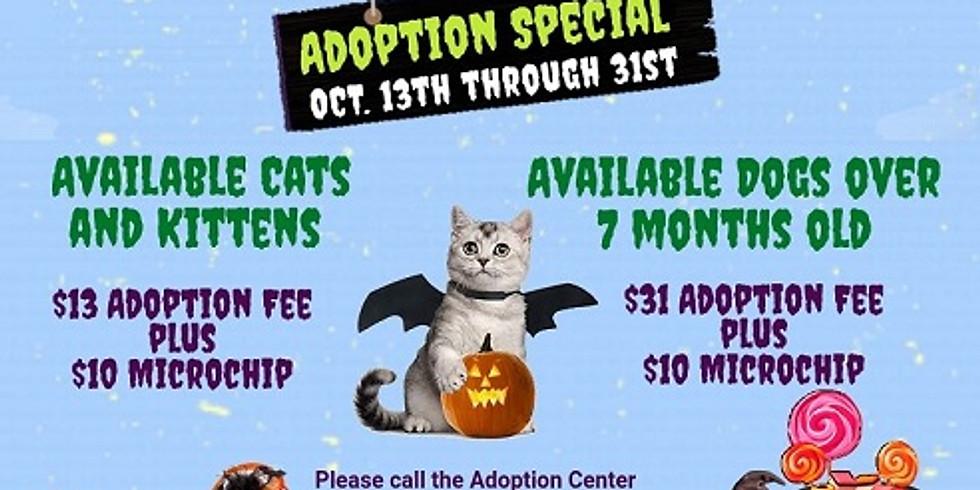 Spooktacular Adoption Special