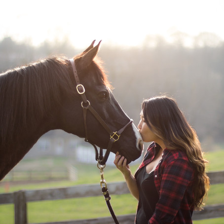 How Founder Made Me an Equine Photographer