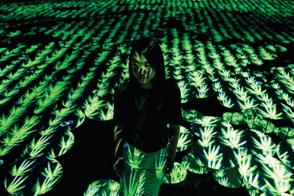美術館以投影營造出一望無際的稻田。(法新社圖片)