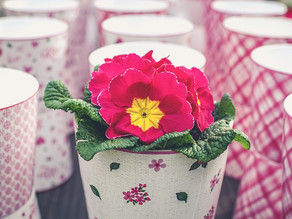 Purchase Easter Flowers by March 27