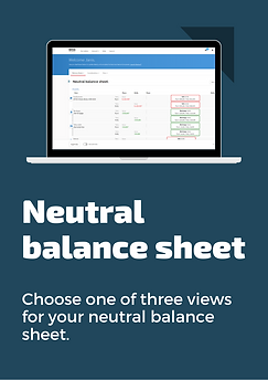 Flyer - neutral balance sheet.png