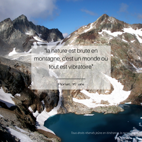 L'énergie vibratoire de la nature