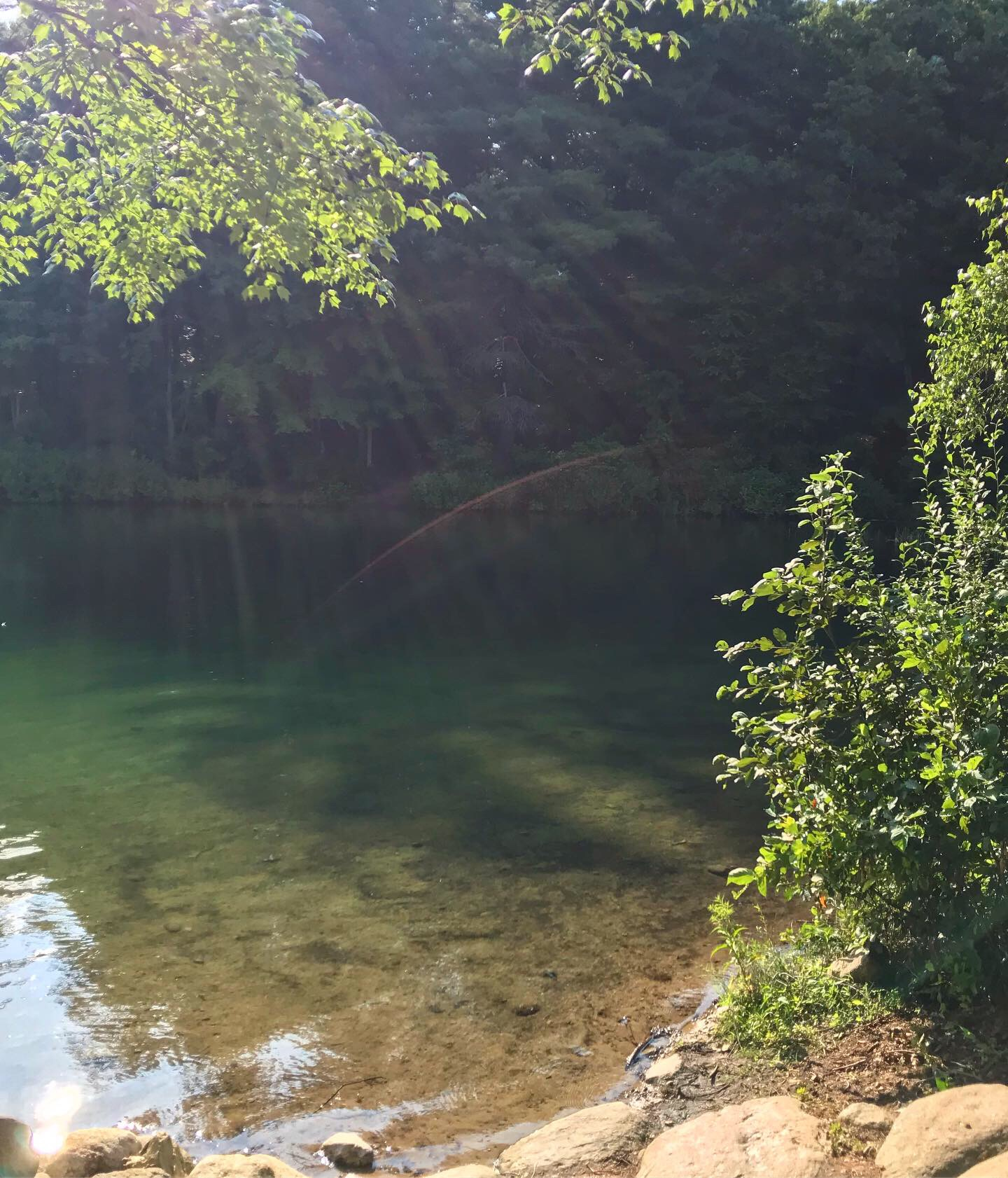 Get Lit on Tour: Walden Pond