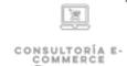 CONSULTORIA E-COMMERCE.png